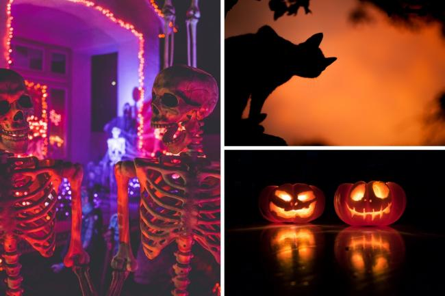 Five tips for how to stay safe this year while celebrating Halloween. Photos: Unsplash