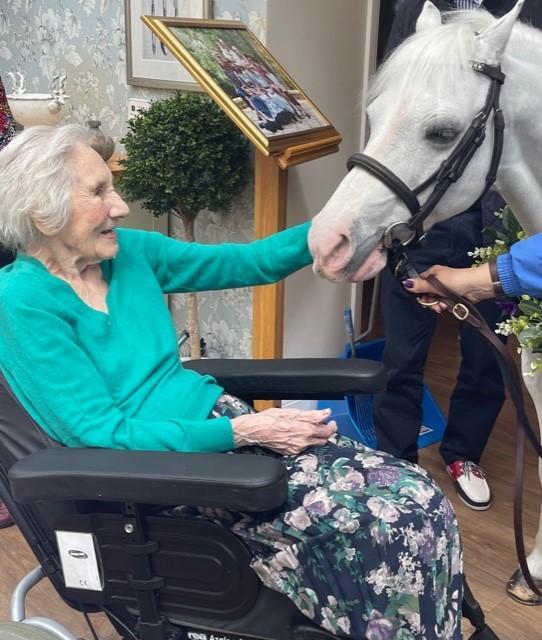 Hillingdon Times: Nesta Williams has always loved animals