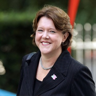 The complaint into Maria Miller's expenses was lodged earlier this week by Labour MP John Mann
