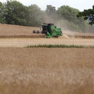 A report shows UK agriculture's contr