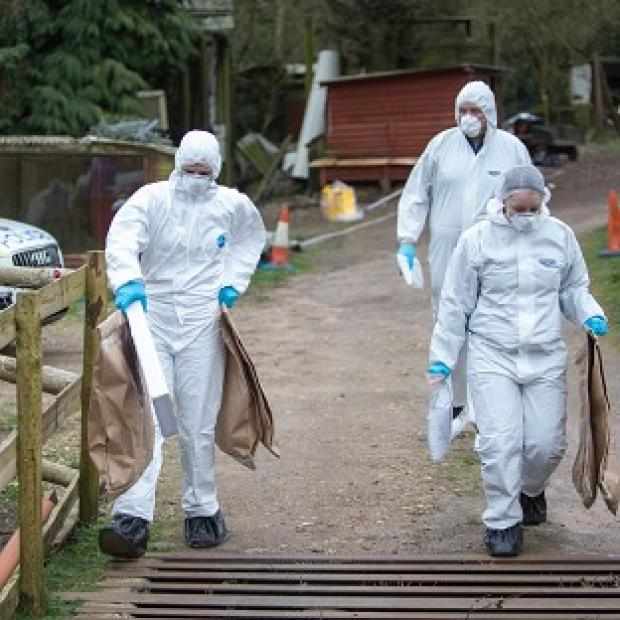 Hillingdon Times: Police at the murder scene at Keepers Cottage Stud