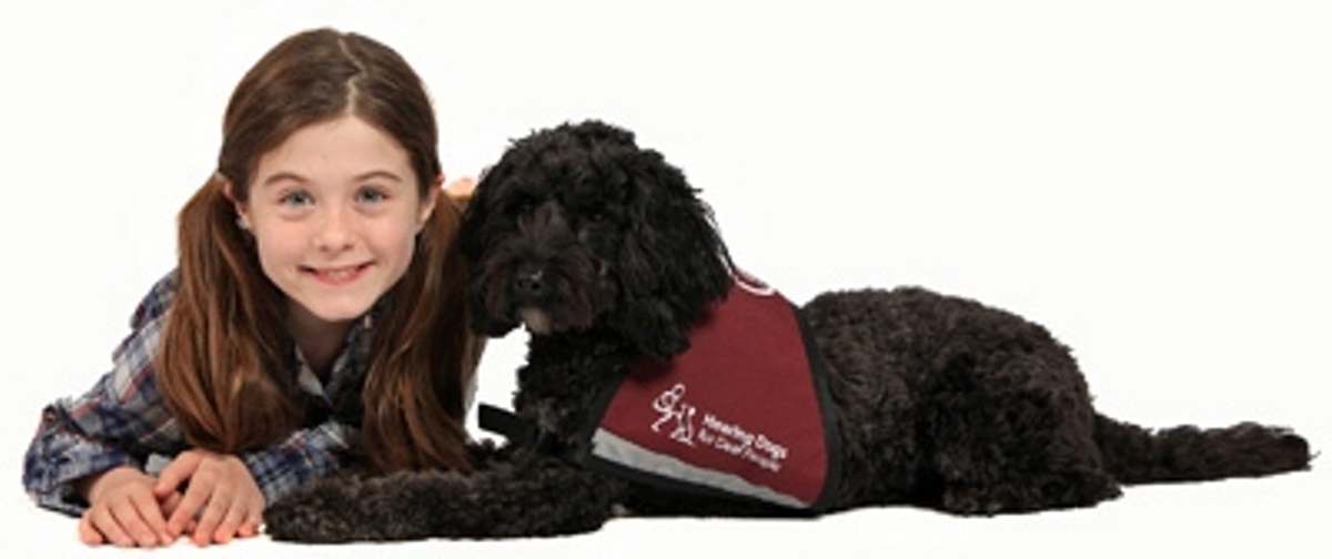 Hearing Dogs was launched at Crufts 30 years ago