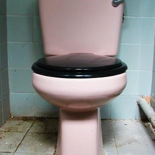 A pink lavatory built for the Queen's 1957 visit to the West Midlands (Gethar Ventures/PA)