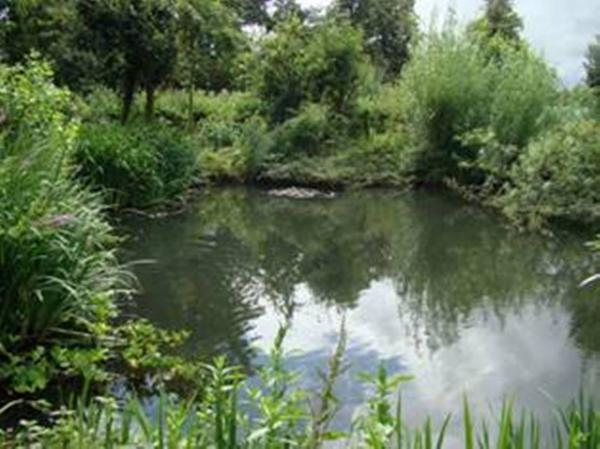 Green idyll: Rural Activities Centre in West Drayton Road