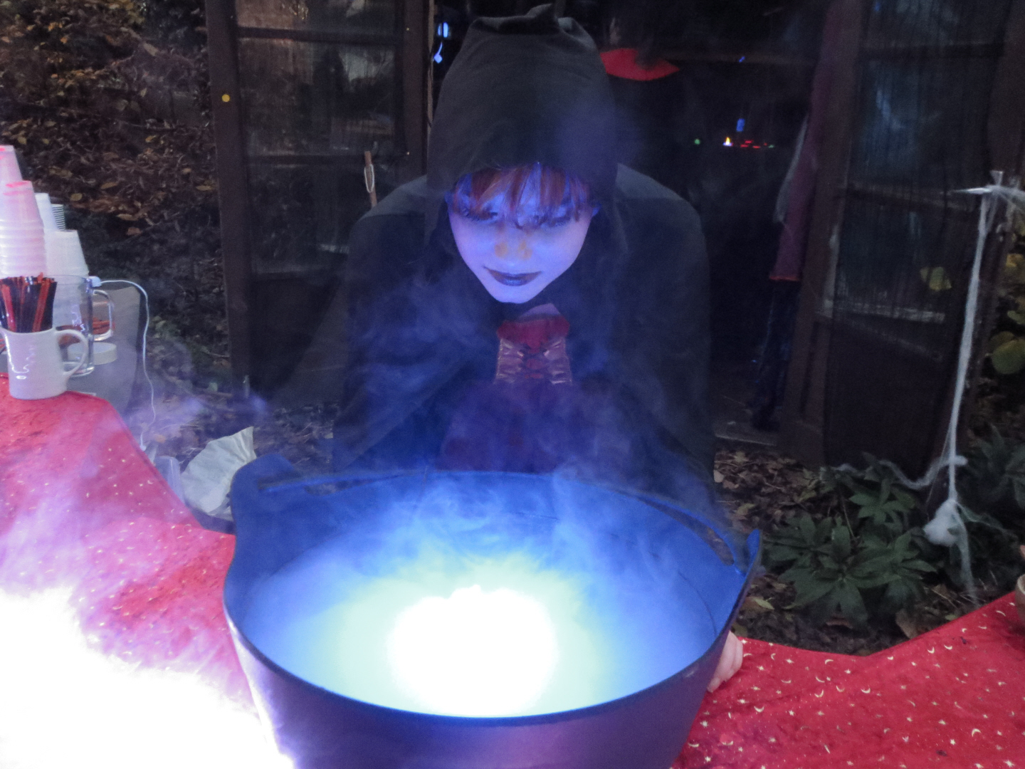 Halloween for the family at Mill Green Museum